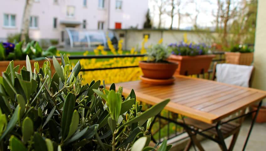 Επιλογή Φυτών Βεράντας Στην Ανακαίνιση Διαμερίσματος