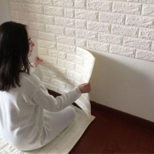 Εφε Πέτρας στους Εσωτερικούς Τοίχους του Σπιτιού